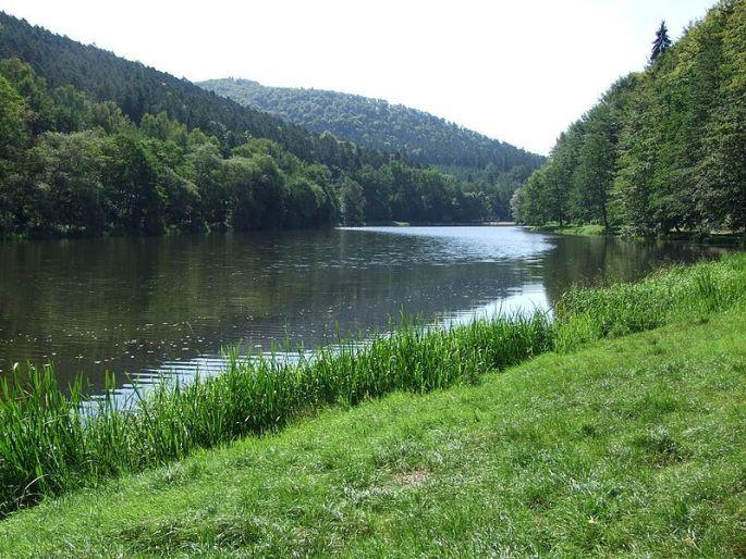 Plan d\'eau de Fleckenstein