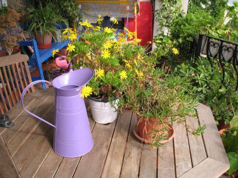 Plantes et fleurs sur mon balcon ou ma terrasse