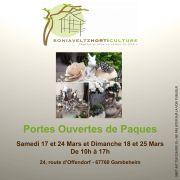 Portes ouvertes de Pâques à Horticulture Sonia Veltz 2018