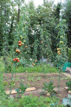 Avant de semer, il faut prévoir la bonne surface pour son potager et pouvoir nourrir toute la famille