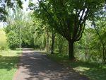 <p>Une longue promenade ombrag&eacute;e qui nous m&egrave;ne jusqu\'au centre de Mulhouse</p>