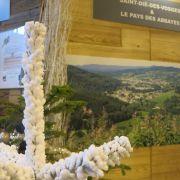 Nos idées sorties dans les Vosges