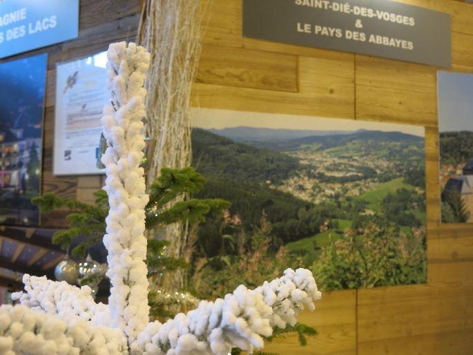 Saint-Dié-des-Vosges, tout un territoire