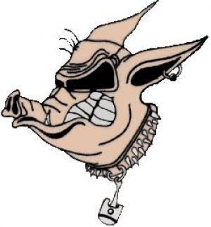 Rallye des cochons des Pistons du Der