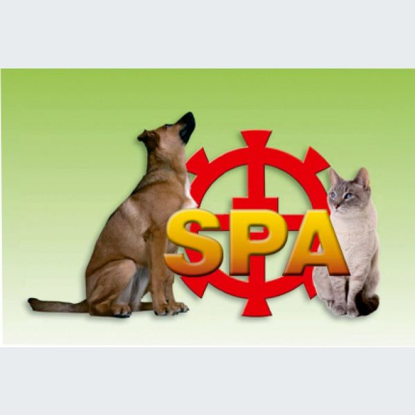 refuge de la spa mulhouse animalerie et spa