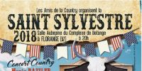 reveillon du nouvel an 2018-2019 a florange - salle aubepine : country party