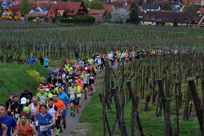 Ronde des Elfes 2019 à Pfaffenheim