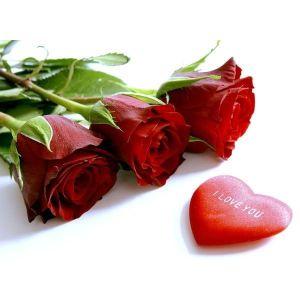 Saint-Valentin, la fête des amoureux
