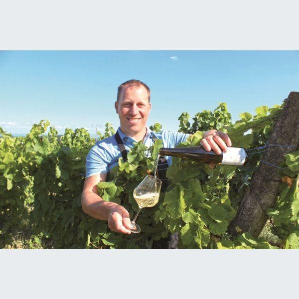 Salon des vignerons ind pendants strasbourg 2014 parc expo for Salon des ce strasbourg