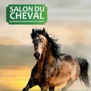 Salon du Cheval 2020