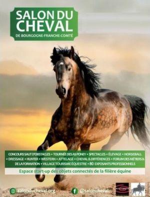 Salon du Cheval 2019