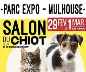 Salon du Chiot à Mulhouse