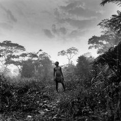 Pygmée Aka en Centrafrique, une photo prise en 1996 par Bernard Descamps