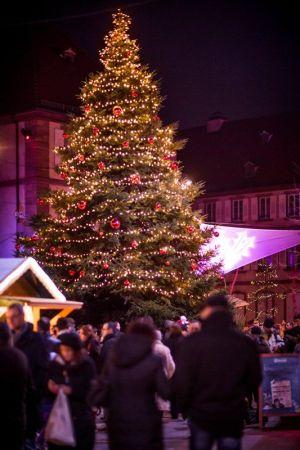 Le sapin du Marché de Noël de Haguenau