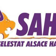 Sélestat SAHB - Dijon Métropole Handball