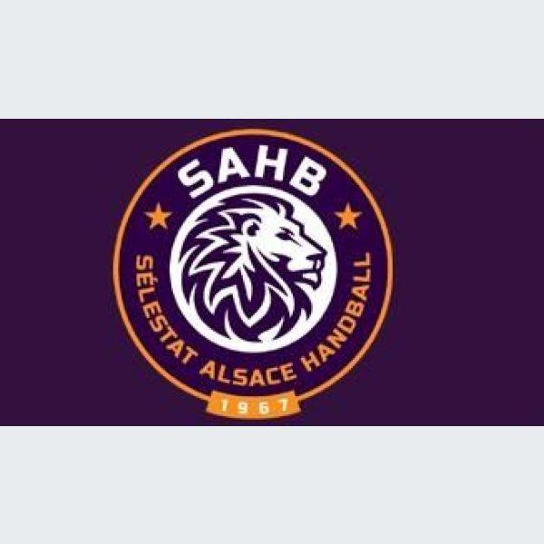 ProLigue Handball 2018-2019   Sélestat SAHB - Cavigal Nice Sports HB ... 9e893aa71ac3