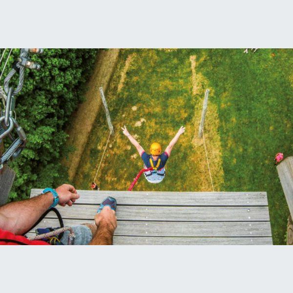 sensations fortes au sommet des arbres - breitenbach (67) - actu