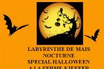 labyrinthe de mais nocturne special halloween