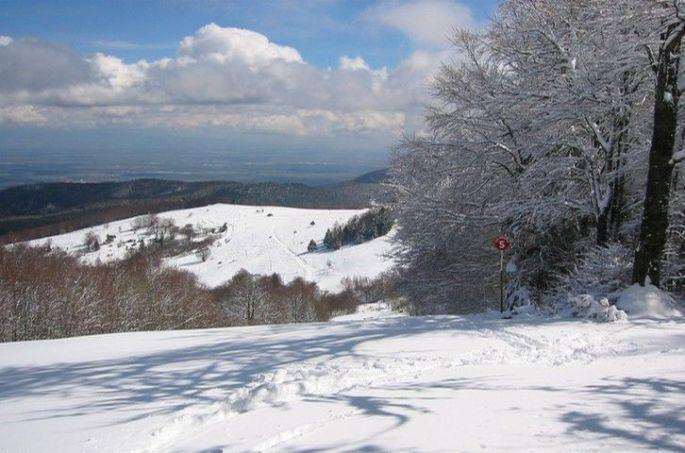 Piste de ski du domaine
