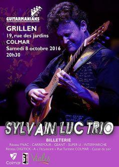 Sylvain Luc Trio
