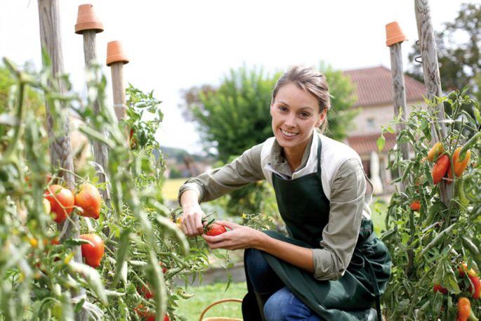 Seriez-vous prêt à manger des produits uniquement dans un rayon de 200km autour de chez vous?