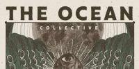 the ocean collective