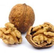 Tout savoir sur la noix