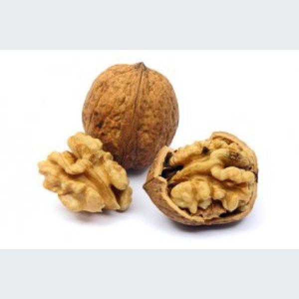 Tout savoir sur la noix appellation d gustation for Tout savoir sur le poussin