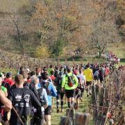 Trail du Téléthon de Bouliac