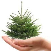 Un autre Noël est possible