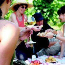 Pique-nique chez le Vigneron Indépendant d'Alsace 2017