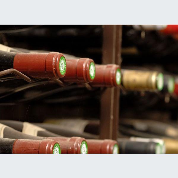 Comment choisir une cave vin cool la cave vin gaggenau - Cave a vin que choisir ...