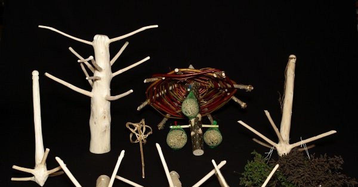 une nouvelle vie pour votre sapin muttersholtz atelier maison de la nature du ried et de l