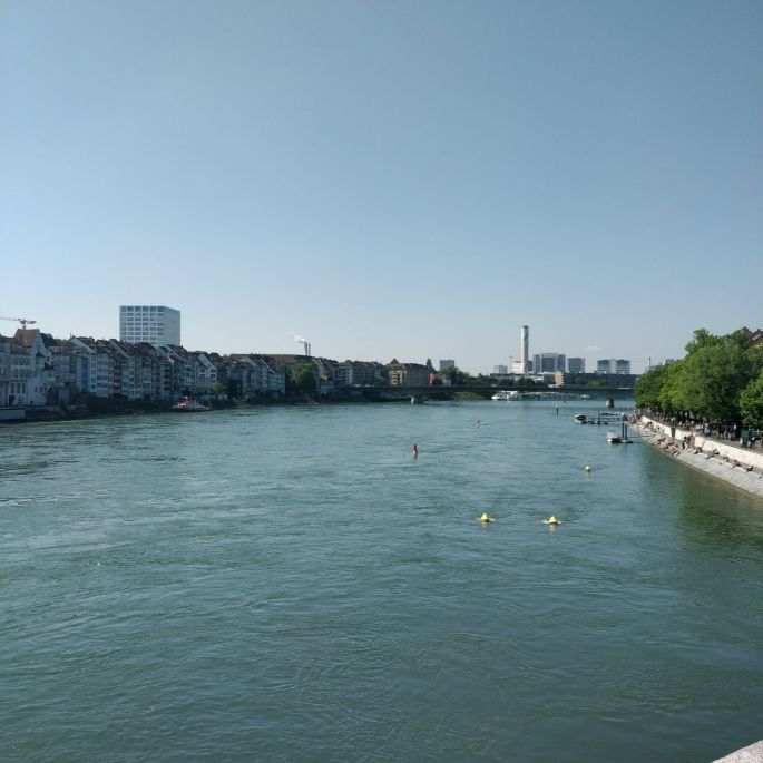 Une tête dans le Rhin à Bâle !