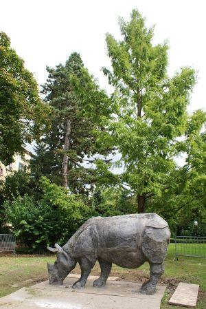 Le rhinocéros réalisé par les étudiants des Arts Déco de Strasbourg, à découvrir dans le jardin du Musée Théodore-Deck