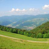 Vallée de la Thur