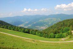 L\'Alsace possède nombre de vallées possédant chacunes leurs caractéristiques propres