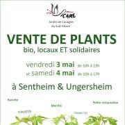 Vente de Plants bio, locaux ET solidaires
