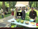 Vidéo : Festival Vitarue à Mulhouse