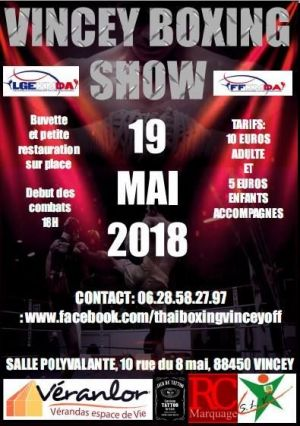 Vincey Boxing Show