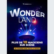 Wonderland, Le Spectacle